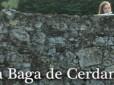"""VII Festivales Musicales """"La Baga de Cerdanya"""""""